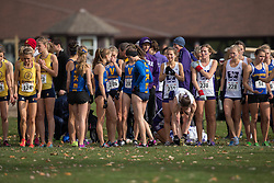 The Victoria Vikes prepare for the start of the the women's  6K Dash at the 2013 CIS Cross Country Championships in London Ontario, Saturday,  November 9, 2013.<br /> Mundo Sport Images/ Geoff Robins
