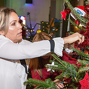 NLD/Amsterdam/20181206 - Sky Radio's Christmas Tree For Charity, Tanja Jess