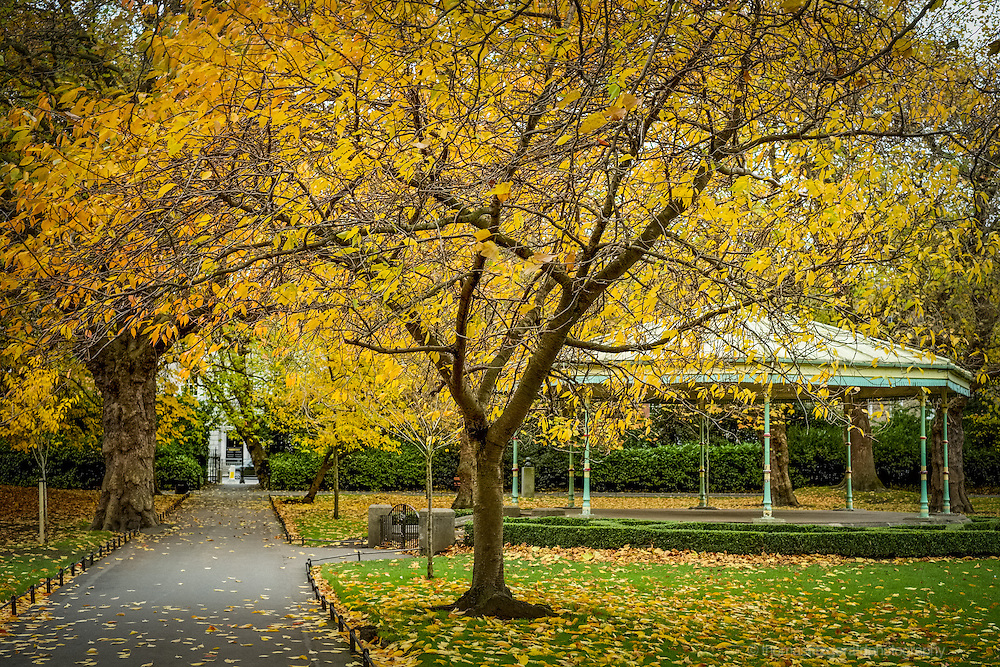 Stephen's Green Bandstand surrounded by Autumn Leaves