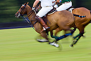 Ponies and riders at Guards Polo Club in Windsor, United Kingdom