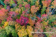 64776-02104 Aerial view of Hugoboom Lake in fall color Alger Co. MI
