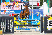 Wilm Vermeir - DM Jacqmotte<br /> FEI World Breeding Jumping Championships for Young Horses 2016<br /> © DigiShots