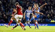 Brighton & Hove Albion v Bristol City 20/10/2015