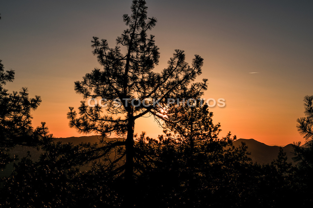 Thomas Mountain in Idyllwild California