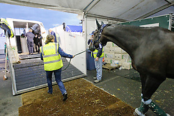 Stand by Me of Swedens Linda Algotsson<br /> Departure of the horses from Liege Airport to Lexington<br /> Alltech FEI World Equestrian Games - Kentucky 2010<br /> © Dirk Caremans