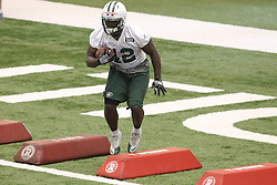 June 12, 2012; Florham Park, NJ, USA; New York Jets running back Terrance Ganaway (42) during New York Jets Minicamp at the Atlantic Health Training Center.