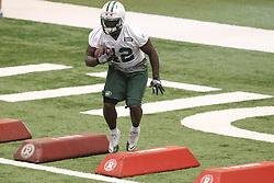June 12, 2012; Florham Park, NJ, USA; New York Jets running back Terrance Ganaway (42) during New York Jets Minicamp at the Atlantic Health Training Center.