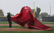 A facility employee spread a tarp over the pitcher's mound as rain falls during a spring training workout at the team's training facility on Saturday, February 18, 2017 in Surprise, Arizona. Workouts were moved inside after a downpour. (Ashley Landis/The Dallas Morning News)