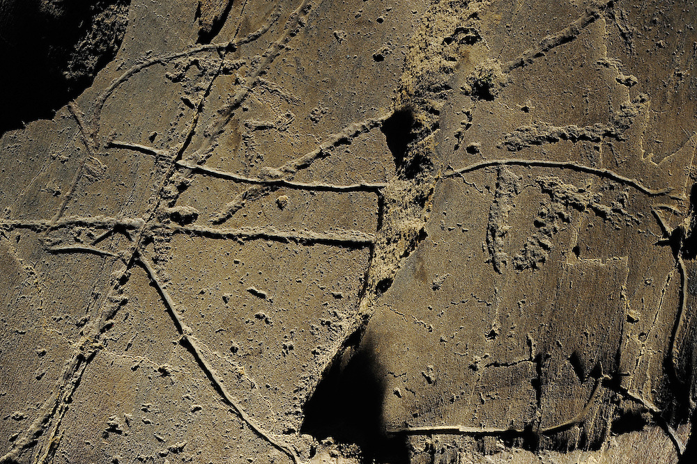 Rock carvings, Iberian Ibex, Capra pyrenaica, Côa valley Archaeological park,.Portugal
