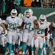 Miami Dolphins players take the field during the New York Jets Vs Miami Dolphins  NFL American Football game at MetLife Stadium, East Rutherford, NJ, USA. 1st December 2013. Photo Tim Clayton