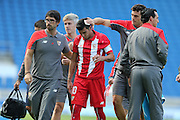 José Antonio Reyes of Sevilla injured during the Pre-Season Friendly match between Brighton and Hove Albion and Sevilla at the American Express Community Stadium, Brighton and Hove, England on 2 August 2015.