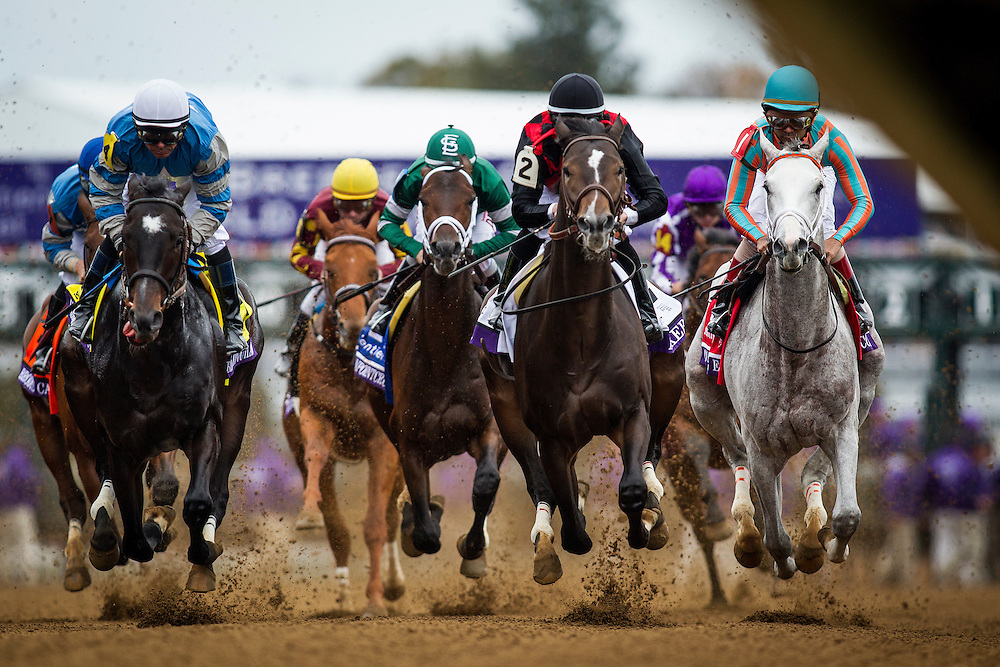 October 31, 2015:  Conquest Big E, Riker, and the The Greencrusader in the Breeders' Cup Juvenile at Keeneland Race Track in Lexington, Kentucky. Evers/ESW/CSM