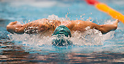 Daniel Bell of the Aqua Knights team competes in the 16+ Men's 100m Butterfly race during the Senior Zonal Championship at the Wellington Regional Aquatic Centre in Kilbirnie in Wellington on Friday the 4th of October 2013. Photo by Marty Melville/www.photosport.co.nz
