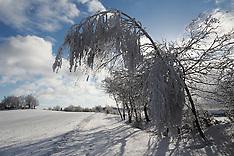 CZ Nedvezi Winter 2016