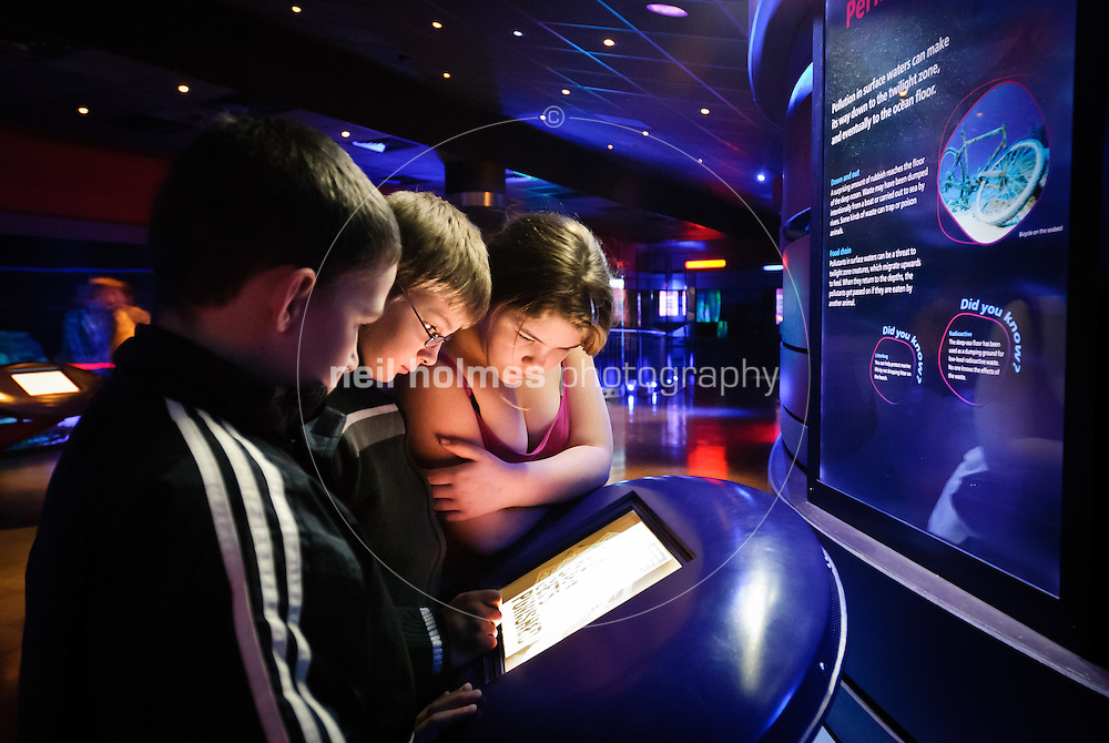 School children visiting the Deep in Hull