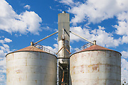 Wheat silos at transport terminal in Echuca, Victoria, Australia <br /> <br /> Editions:- Open Edition Print / Stock Image