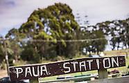 AHU15 - Paua Station - PFD