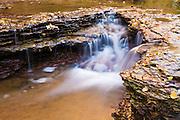 Cascade along the Left Fork of North Creek, Zion National Park, Utah
