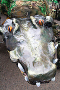 Alligator puppet representing the creatures who live in the water. MayDay Parade and Festival. Minneapolis Minnesota USA