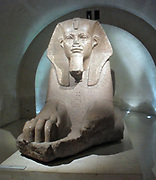 Grand sphinx, found at Tanis, Egypt. Granite