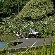 """Planten un Blomen. .Mitten in der City liegen die Alten Wallanlagen und der berühmte Park """"Planten un Blomen"""". Hier gibt es einen Botanischen Garten mit Tropenhaus und den größten Japanischen Garten Europas: eine stille, aber eindrucksvolle Attraktion..Hamburg, Germany."""