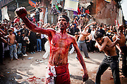 A Shiite religious procession on the 10th day of the holy Islamic month of Muharram in New Delhi, India...Shiites commemorated Ashura across India, beating their chests and flailing themselves with chains to commemorate the killing of Imam Hussein by armies of the Sunni caliph Yazid at the Battle of Kerbala on 10th October, 680AD.