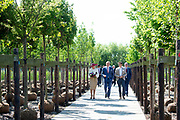 Koning Willem-Alexander en koningin Maxima bezoeken het Tree Centre Opheusden tijdens het streekbezoek aan de Betuwe. <br /> <br /> King Willem-Alexander and Queen Maxima visit the Opheusden Tree Center during the regional visit to the Betuwe.