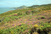 View north to Penberry from near Carn Llidi, St David's, Pembrokeshire, Wales