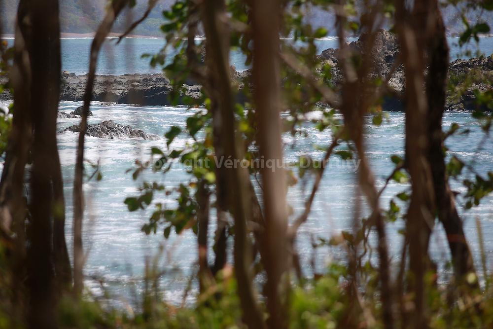 Refugio mixta de Vida silvestre Romelia ( Natural Reserve), Nicoya Peninsula, Costa Rica // Refugio mixta de Vida silvestre Romelia ( refuge de vie sauvage mixte Romelia ) , Péninsule de Nicoya (Peninsula de Nicoya en espagnol), côte pacifique du Costa Rica