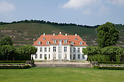 Weingut Schloss Wackerbarth, Weinberge, Radebeul bei Dresden, Sachsen, Deutschland.|.Castle Wackerbarth, vinery, in Radebeul near Dresden, Germany