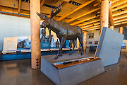 Interpretive display at the Craig Thomas visitor center, Grand Teton National Park, Wyoming USA