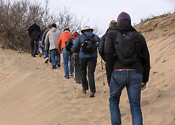 Hikers climb a dune to get a better view of elephant seals on the beaches of Ano Nuevo State Park in Pescadero, Calif., Friday, March 3, 2017, where the breeding season for Earth's largest pinnipeds is winding down. (Photo by D. Ross Cameron)