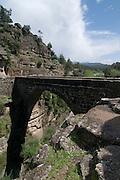 Turkey, Antalya, Koprulu River Canyon The Historic Roman Oluk Bridge (length 22m width 2.70m) spanning the gorge