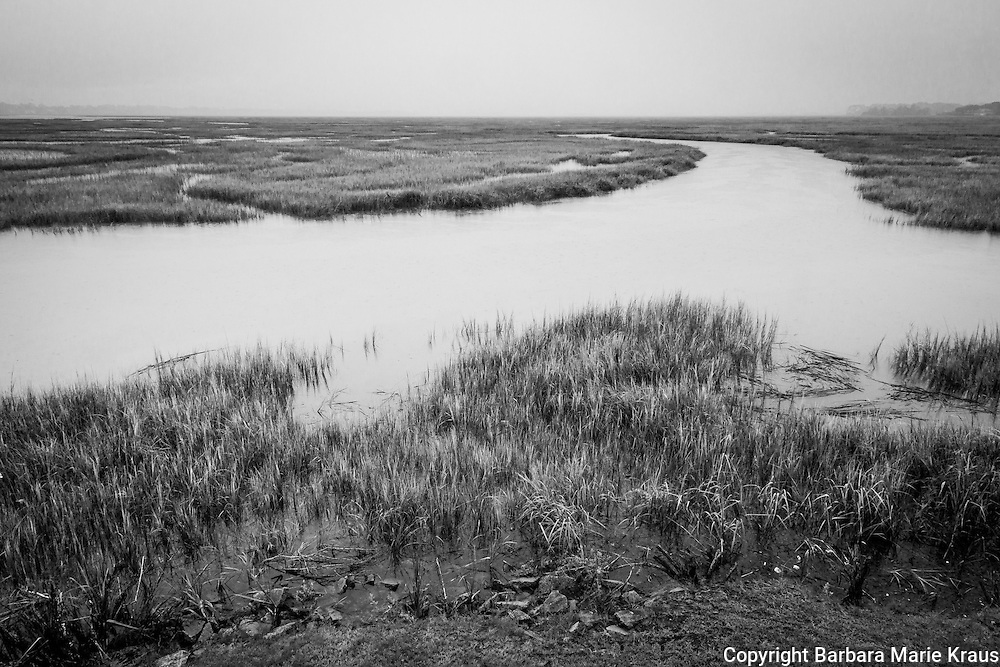 A view of the salt marsh from Village Creek Landing on St. Simons Island.