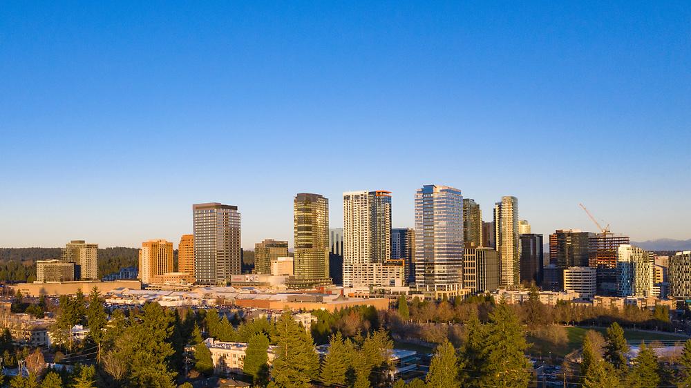 United States, Washington, Bellevue, aerial view of skyline