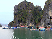 floating village; houses anchored in bay by karst formations; Halong Bay; Vietnam