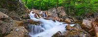 Glen Ellis Falls, White Mountains National Forest, New Hampshire