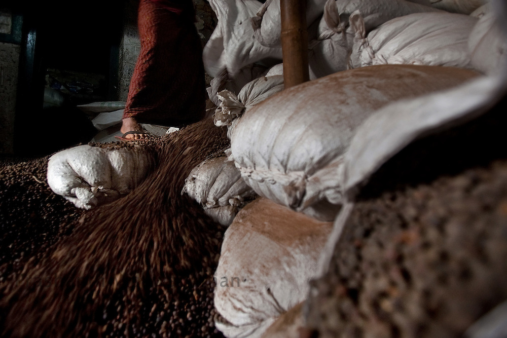"""Labourers work at a coffee  """"Dry"""" process factory in Coorg, India,  on Sunday January 31, 2010. Photographer: Prashanth Vishwanathan/Bloomberg News"""