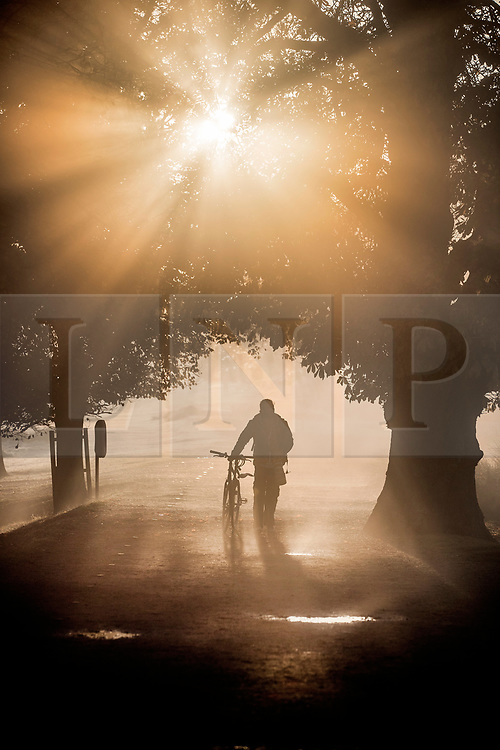© Licensed to London News Pictures. 06/11/2017. London, UK.  A man pushes his bike in Richmond Park at first light. Parts of the UK are experiencing freezing temperatures today. Photo credit: Peter Macdiarmid/LNP