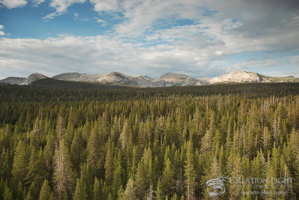 Lembert Dome overlooks the Tuolumne Meadows and River in Yosemite National Park. The treeless granite dome has a sheer west face that is, 300 feet high and becomes less steep on the other three sides.  It is a popular destination for hiking and rock climbing.