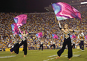 The LSU colorguard performs at half time Saturday night in Tiger Stadium.  photo by Crystal LoGiudice