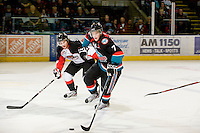 KELOWNA, CANADA, DECEMBER 3: Damon Severson #7 of the Kelowna Rockets skates with the puck as the Prince George Cougars visit the Kelowna Rockets  on December 3, 2011 at Prospera Place in Kelowna, British Columbia, Canada (Photo by Marissa Baecker/Shoot the Breeze) *** Local Caption ***