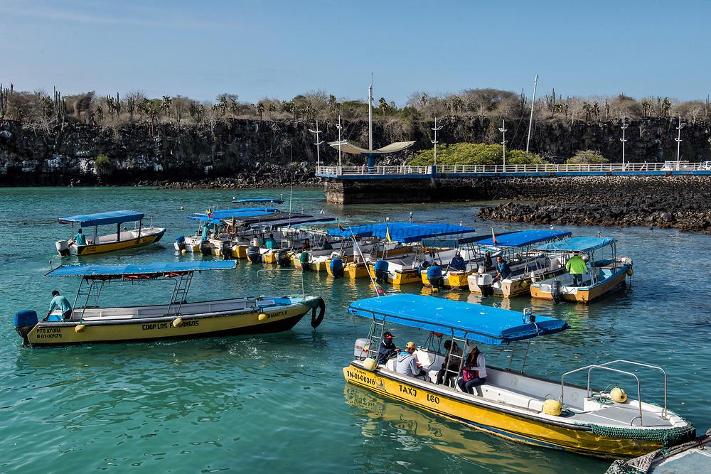 Water Taxis<br /> Puerto Ahora Harbor<br /> Puerto Ayora<br /> Santa Cruz Island<br /> Galapagos<br /> Ecuador, South America