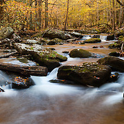 Lower Tremont Creek Cascade Pools- Great Smoky Mountains - Fall Color