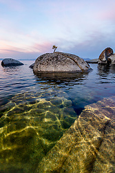"""Tahoe Boulders at Sunrise 23"" - Photograph of a little bonsai like tree on a boulder near State Line Point at Crystal Bay, Lake Tahoe. Shot from a kayak at sunrise."