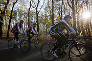 Een groep wielrenners genieten in het bos bij Zeist van het mooie herfstweer.<br />