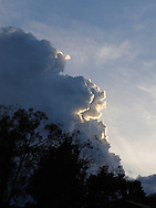 Storm Cloud, Cumulus Nimbus over trees.<br /> Image protected by copyright.  For usage rights  Contact EFFECTIVE WORKING IMAGE.via our contact page at :<br /> www.photography4business.com