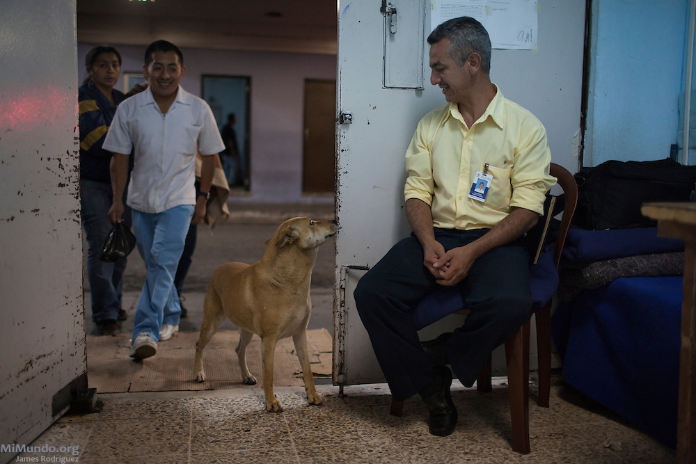 Luis Moran, emergency room attendant at the San Juan de Dios Hospital, watches as a street dog attempts to enter the ER. Guatemala City, Guatemala. July 12, 2014.