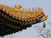 roof decoration on an old building China