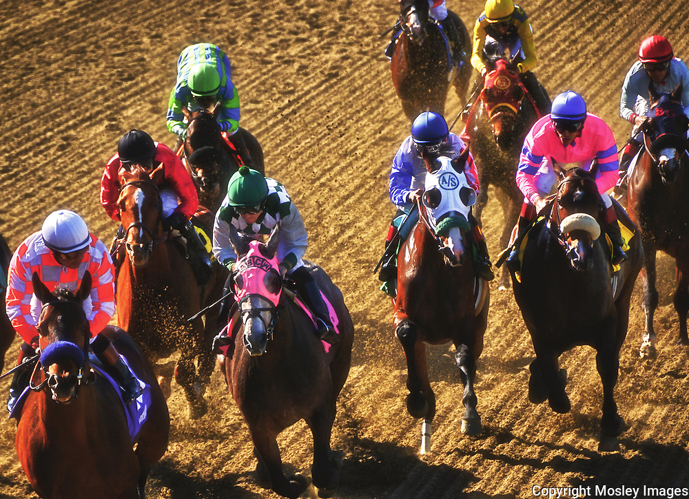 Thoroughbreds positioning for the stretch run at Santa Anita Park, Arcadia, California. Photographed by Barry A Mosley - Lincoln, Nebraska, photographer.